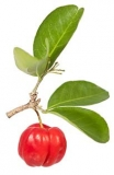 Acerola - Produkte